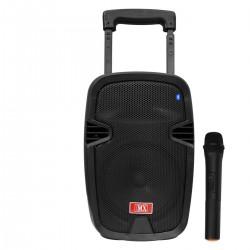 Тонколона с вграден акумулатор, МП3 плейър от SD карта и флашка, Блутут и безжичен микрофон за караоке FEYIPU ES-81